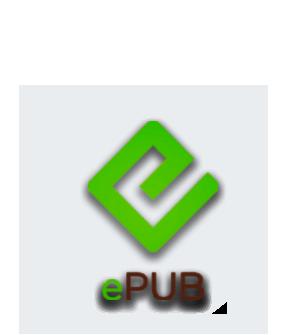 LIBRO EPUB